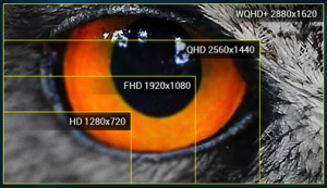 """Cel mai puternic laptop de 15"""" din lume pentru gaming - Display-ul WQHD+ IPS"""