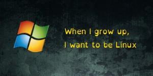 Caracteristici inspirate din Linux