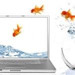 Ati varsat lichid in monitor? – solutii